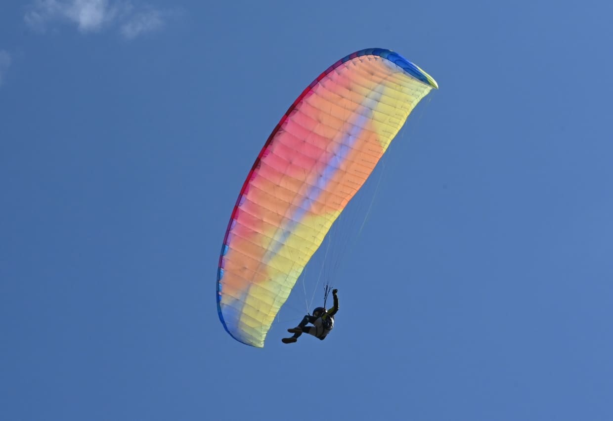 New paragliding wing BGD Kiss for sale