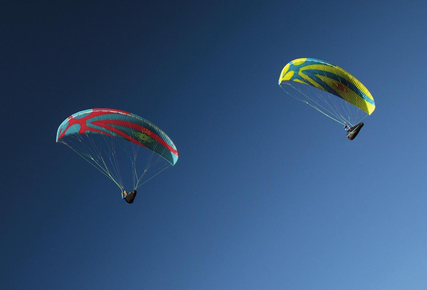Paragliding wing Icaro Buteo XC for sale