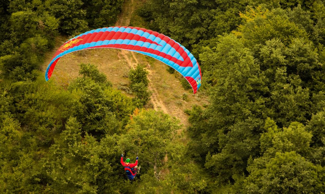 Falco paraglider EN-A Icaro paragliders for sale
