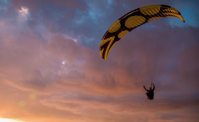 Paraglider Pandion Icaro paragliders for sale