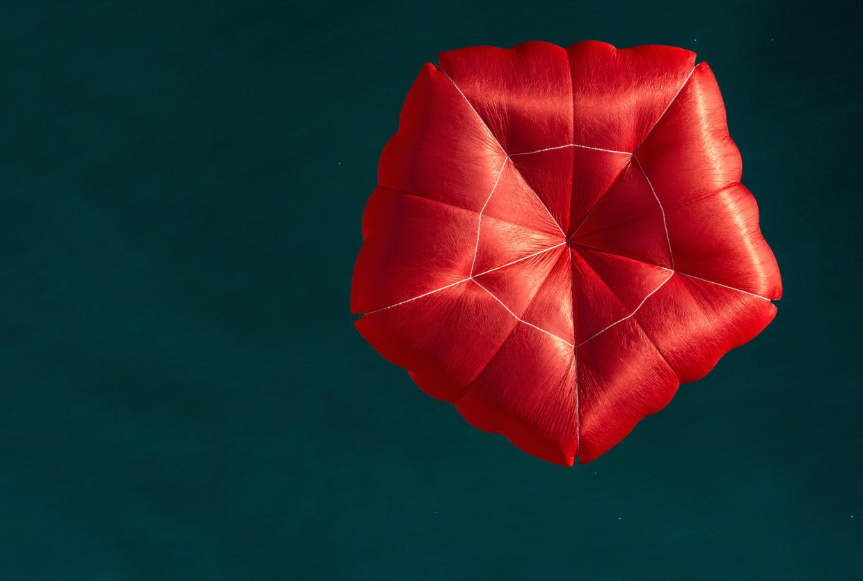 Buy paragliding reserve parachute Nova Pentagon